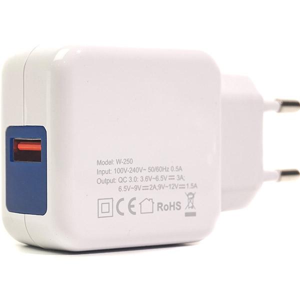 Зарядное устройство POWERPLANT W-250 (SC230013)