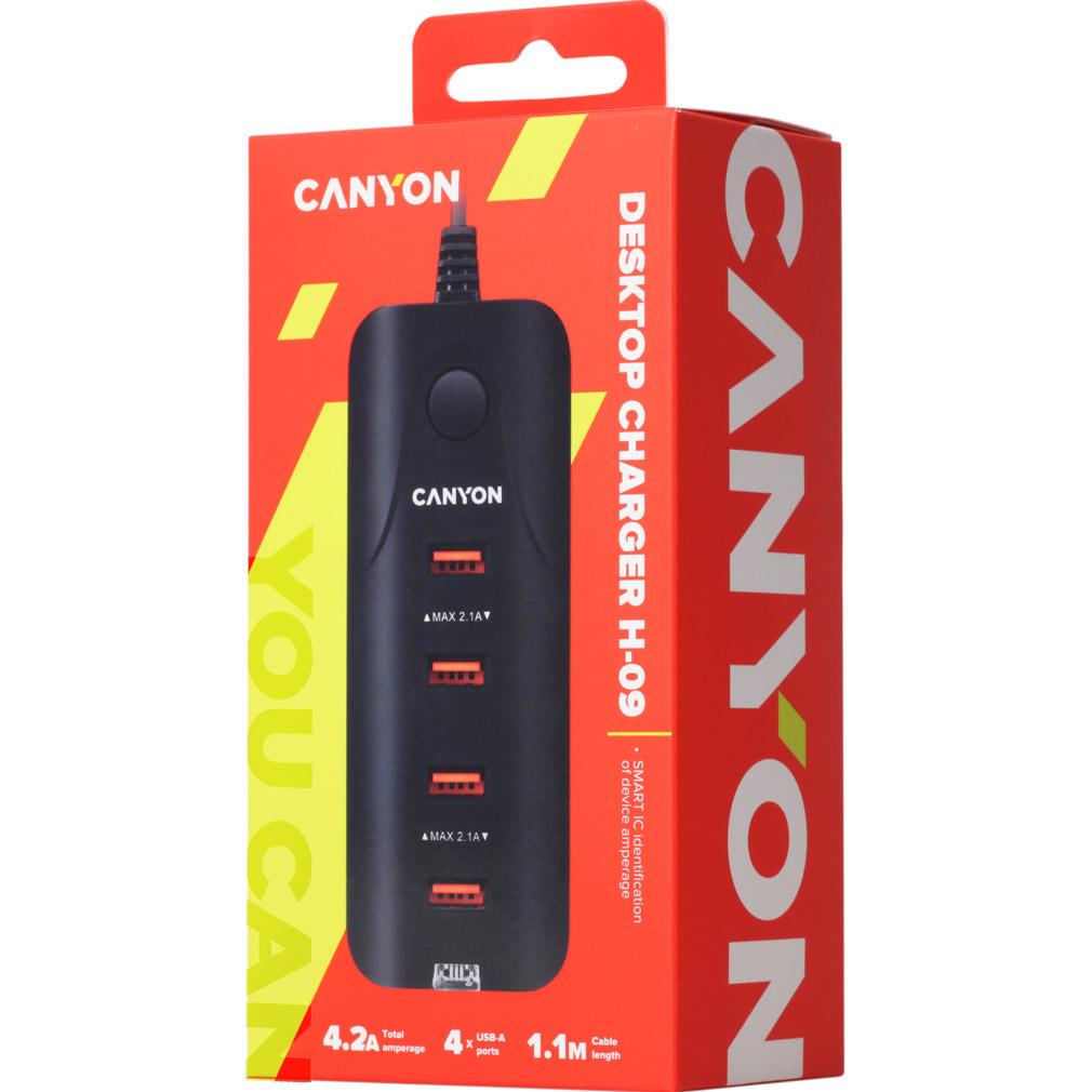 Зарядное устройство CANYON CNE-CHA09 Black