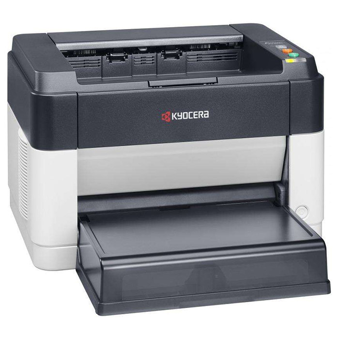 Принтер KYOCERA Ecosys FS-1060DN (1102M33RUV)