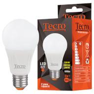 Лампочка LED TECRO Pro A60 E27 11W 3000K 220V (PRO-A60-11W-3K-E27)