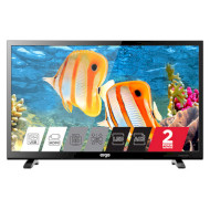 Телевизор ERGO LE21CT5000AK