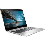 Ноутбук HP ProBook 450 G7 Silver (6YY28AV_V19)