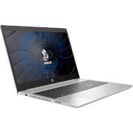 Ноутбук HP ProBook 455 G7 Silver (175W5EA)