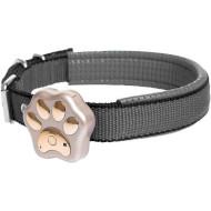 GPS трекер для тварин SMART GPS Collar V30 Gold