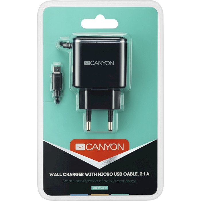 Зарядное устройство CANYON CNE-CHA041 Black/Silver