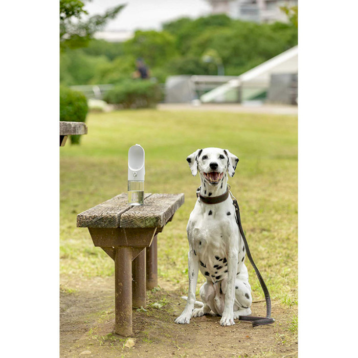 Поилка для собак PETKIT Eversweet Travel S300 White (P4220)